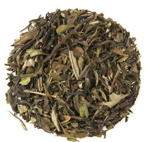 White Mischief White Tea 1