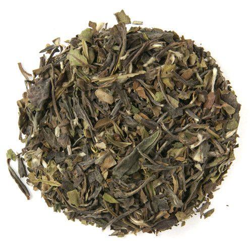 Oasis Mango White Tea 1